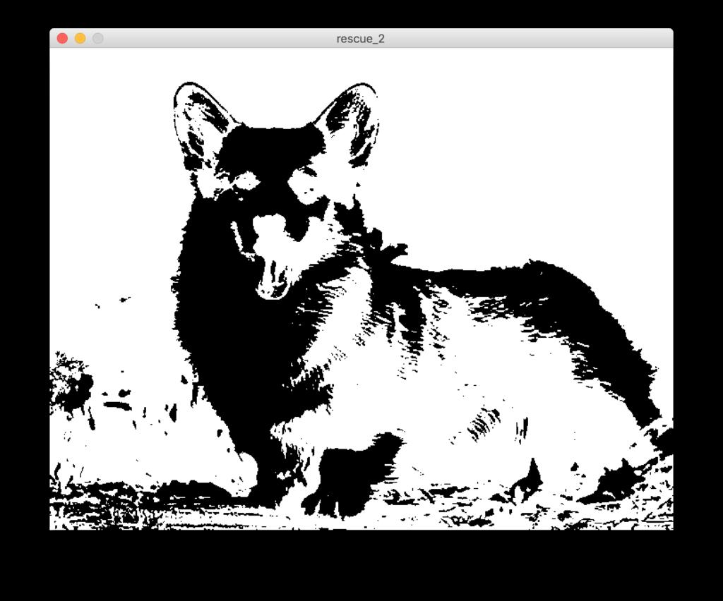 binarizza un'immagine con Processing